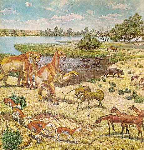 cenozoic era periods MEMEs