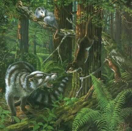 Paleocene forest