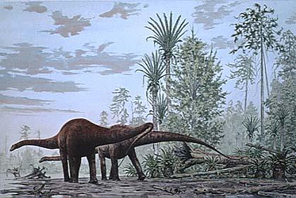 external image diplodocus.jpg