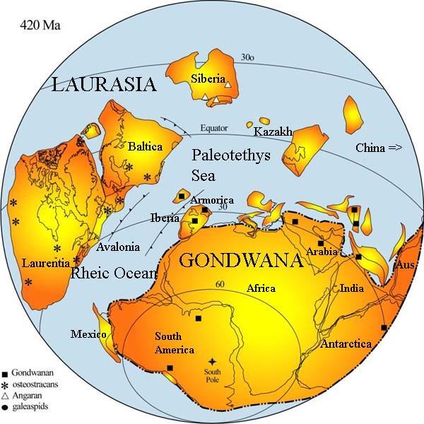 construction of gondwana essay