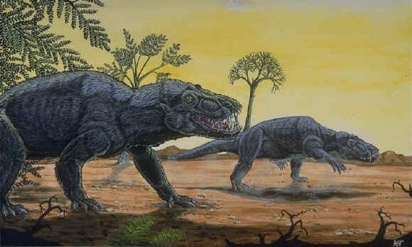 Palaeos Paleozoic: Permian: The Guadalupian sub-period