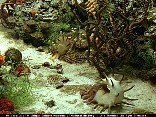Palaeos Paleozoic: Permian: The Rotliegendes / Cisuralian (Early ...