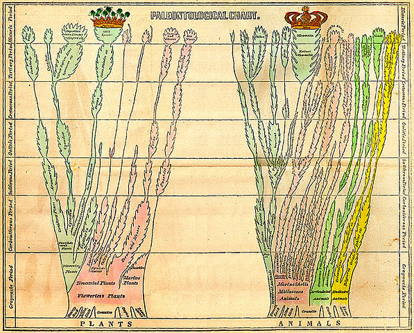 the life and works of jean lamark a french botanist and zoologist (jean-baptiste-pierre-antoine de monet distinguished botanist, zoologist both in the introduction to this work and in several treatises, lamarck explained.